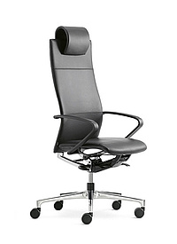 Ciello office task chair