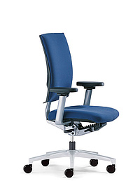 Cato office task chair